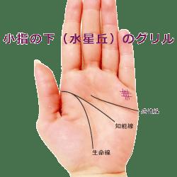 小指 下 水星丘 グリル 格子紋