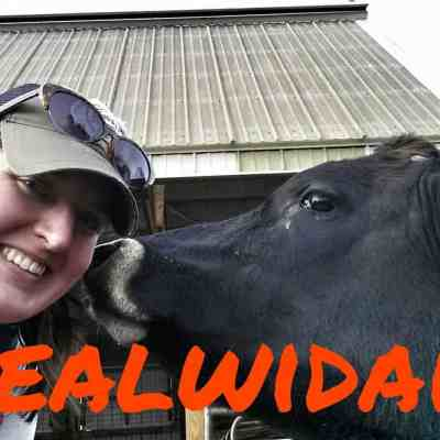 Despite what Mercy For Animals wants you to think, we don't abuse our cows. #RealWiDairy
