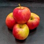 Unexpected Benefits of Food Allergies