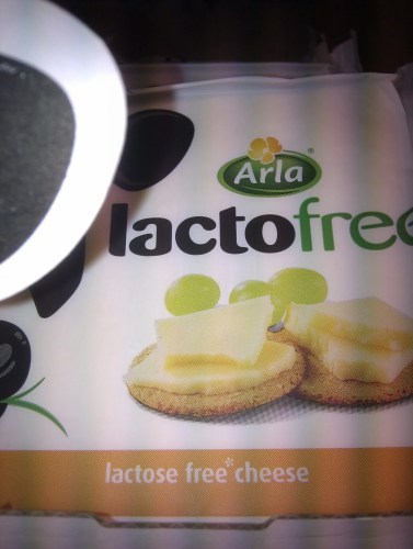 Lactose free cheese
