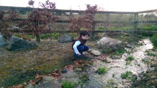 Fishing in St. Brigid's Well adjacent to our house