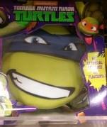 Turtles Birthday Cake