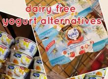 dairyfree alternatives to yogurt