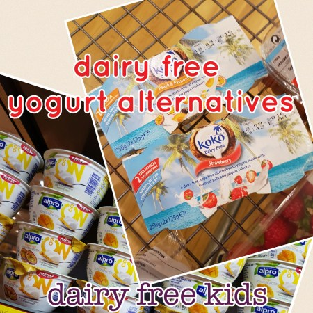 dairyfree alternatives to yogurt