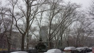 Sara Delano Roosevelt Park in the snow