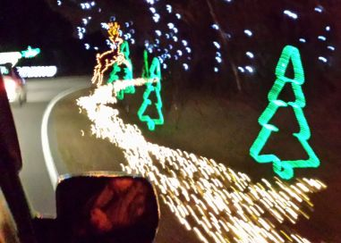 Taking pictures from our car at the James Island Holiday Light Show