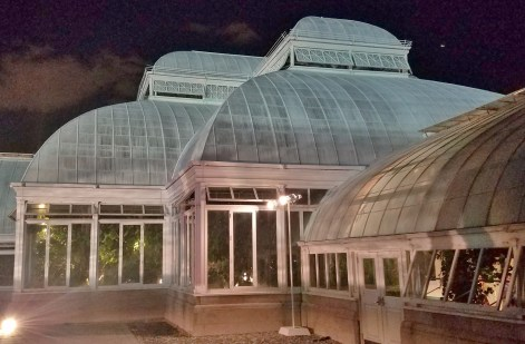 Outside Conservatory at Night