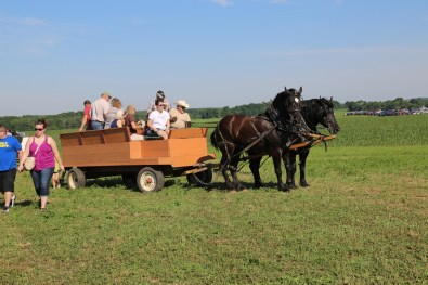 Tractor & Horse-drawn wagon rides make the trip from parking fun!