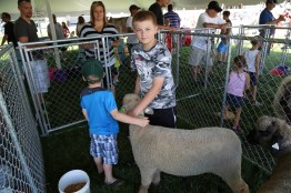 Hands on fun at the Petting Zoo #LoveBOTF