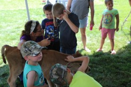 Kids listen to a calf's heartbeat at the 2016 Kewaunee County Breakfast on the Farm #LoveBOTF