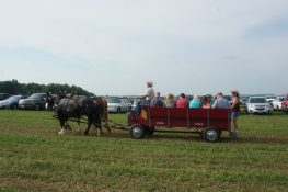 Horse drawn wagons shuttle guests to and from the parking lot.