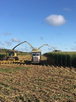 Kinnard_Farms-KF_Harvest1