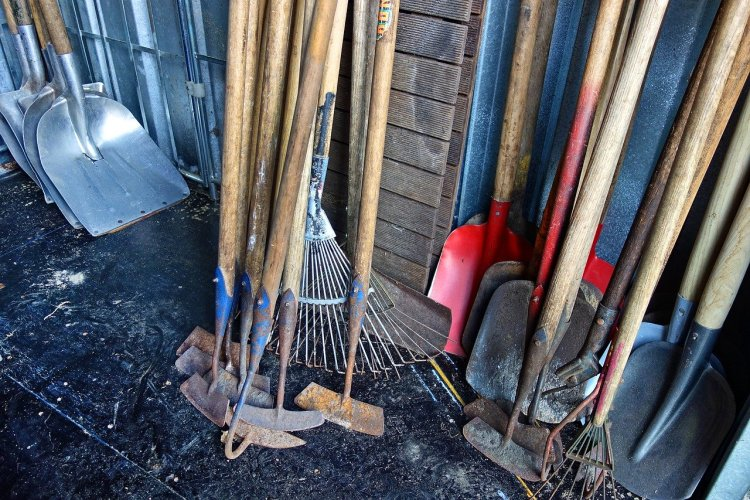An assortment of gardening tools leaning against a brick wall. shovels, hoes, rakes, etc.