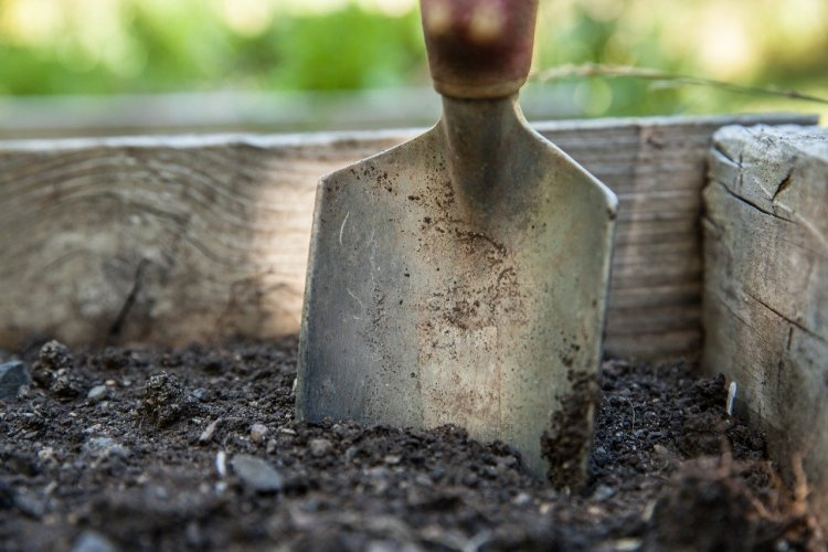 A wooden garden bed with soil and a spade.