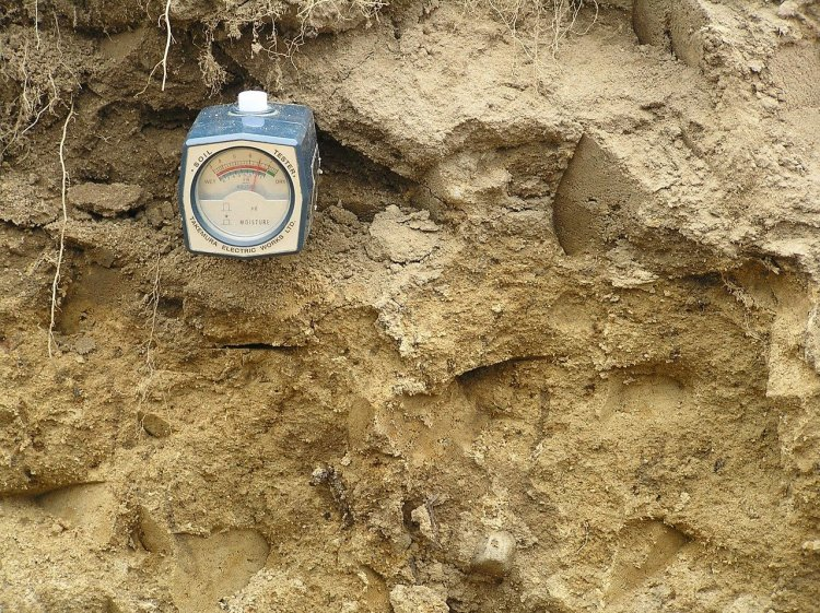 A square metal gauge soil tester to determine the pH level of soil. Dirt or soil is shown in background.