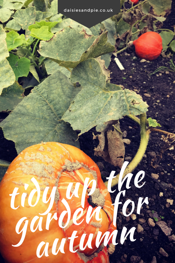 Tidying up the garden for autumn