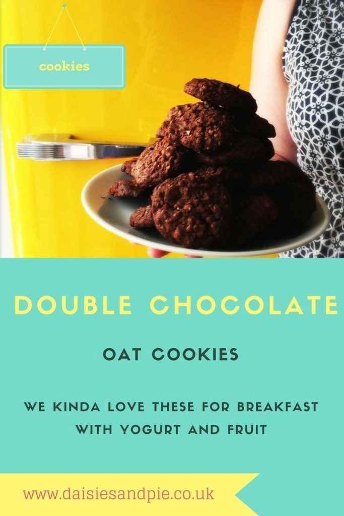 double chocolate cookies, how to make quick cookie dough, oat cookies, easy family food from daisies and pie