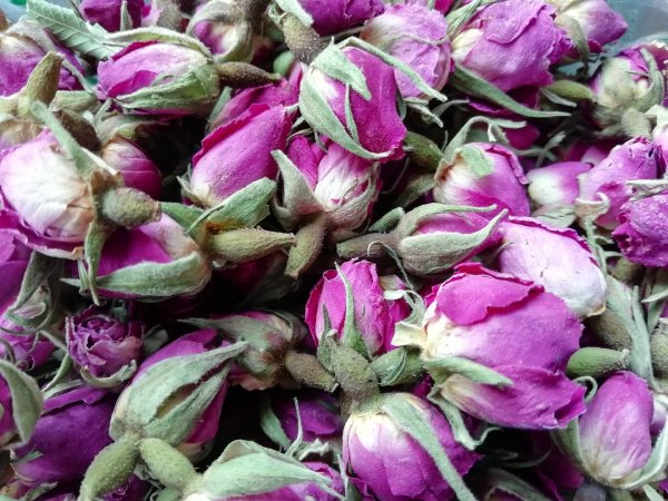 Pink Rose Buds Dry - Dried Flowers Daisyshop
