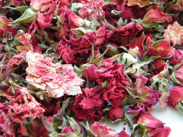Dried Rose Bud Red - Daisyshop Flowers