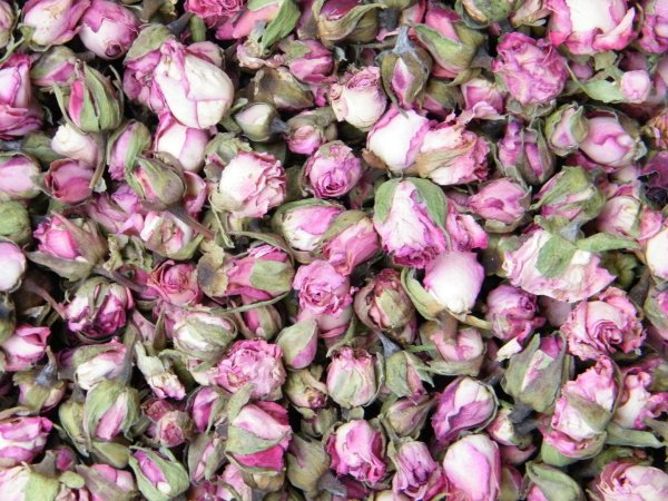 Pink Edge Rose Buds Dried - Flowers Daisyshop
