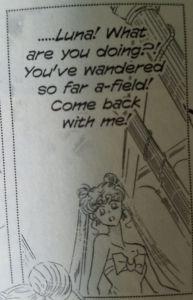 Sailor Moon A-Field