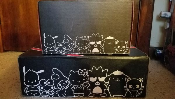 Hello Kitty Loot Crate Retro Rewind & 45th Anniversary