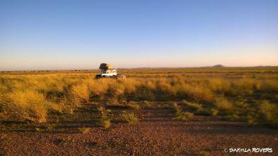 #DakhlaRovers #desert #savannah