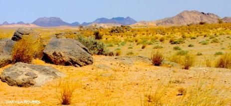 #DakhlaRovers #desert 7 days