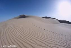 4 days #DakhlaRovers #desert #dunes
