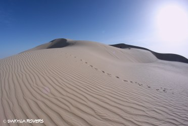 4 days #DakhlaRovers #desert #dunes