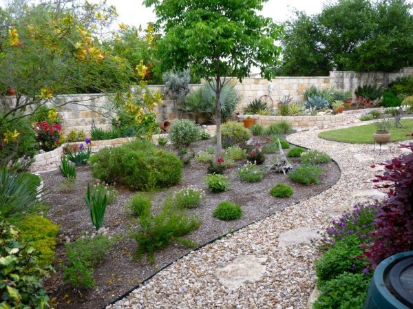 xeriscaping dakine landscaping