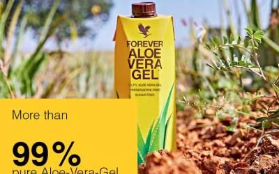Le meilleur gel d'Aloe Vera