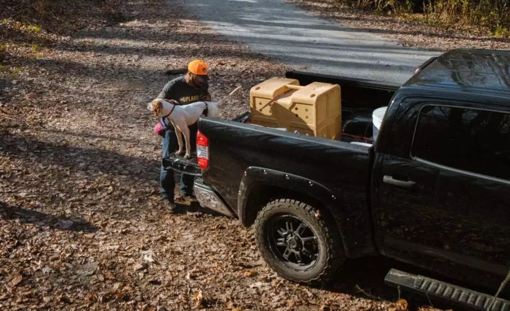 A hunter loads his pointer into a kennel in the bed of his truck.