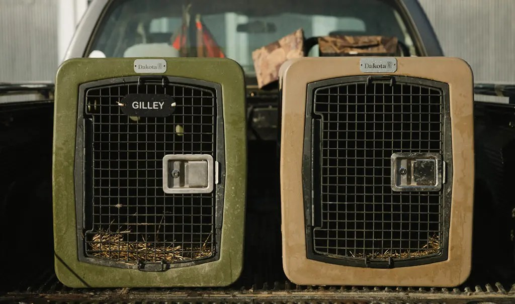 Two Dakota 283 kennels sit next to each other.