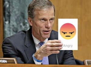 Senator Thune takes action....