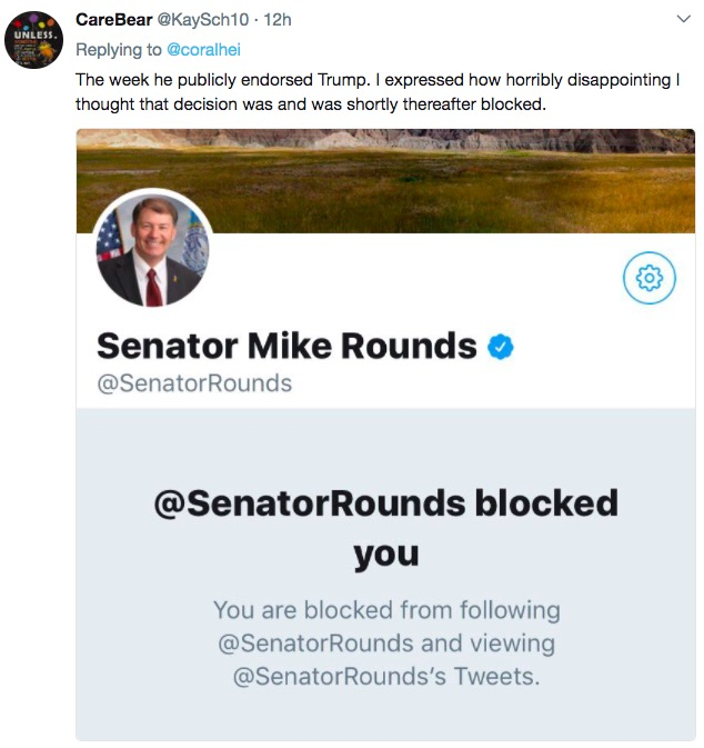 Senator Mike Rounds blocks SD Twitter user, screen cap, 2017.07.30.