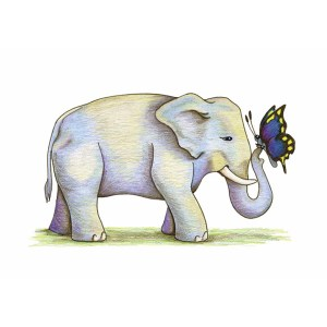 """""""Elephant with Butterfly"""" by Dakota Midnyght Art"""