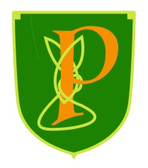 paddys-pub-logo-p-knot-orange-01