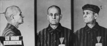 Persecution of Homosexuals in the Third Reich