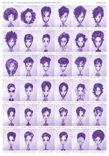Prince Chart Hairstyles Slate
