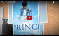 Prince Moonbeam Levels share comp