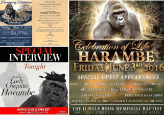 Dis Tew Much! Harambe