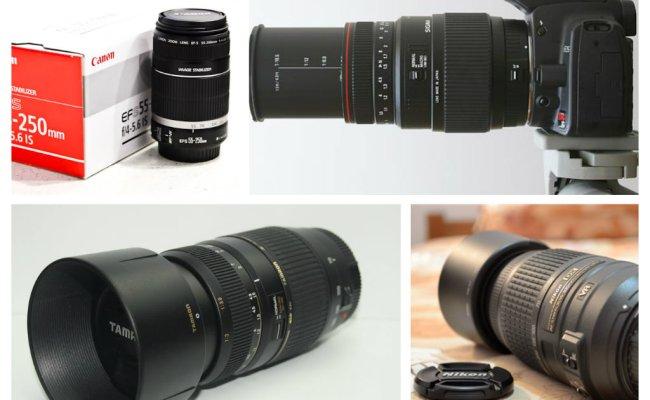Lensa Kamera Daldigital Net