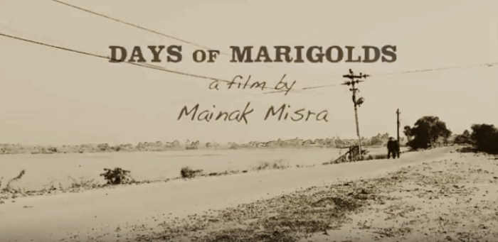 Days of Marigolds - Poster