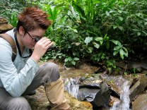 Observing guppies stream-side