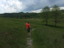 through a meadow when we heard a lightening strike! We hightailed it back to the car.