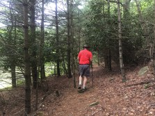 We went through woods and ...
