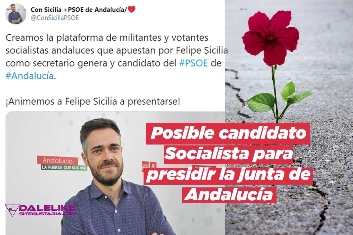 Felipe Sicilia el socialista que viene a renovar el PSOE andaluz contra Susana Díaz