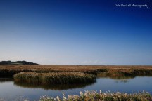 cley-marshes_img_3073_25-10-16