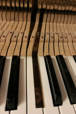 Piano Repairs in Seattle by Dale's Piano Service